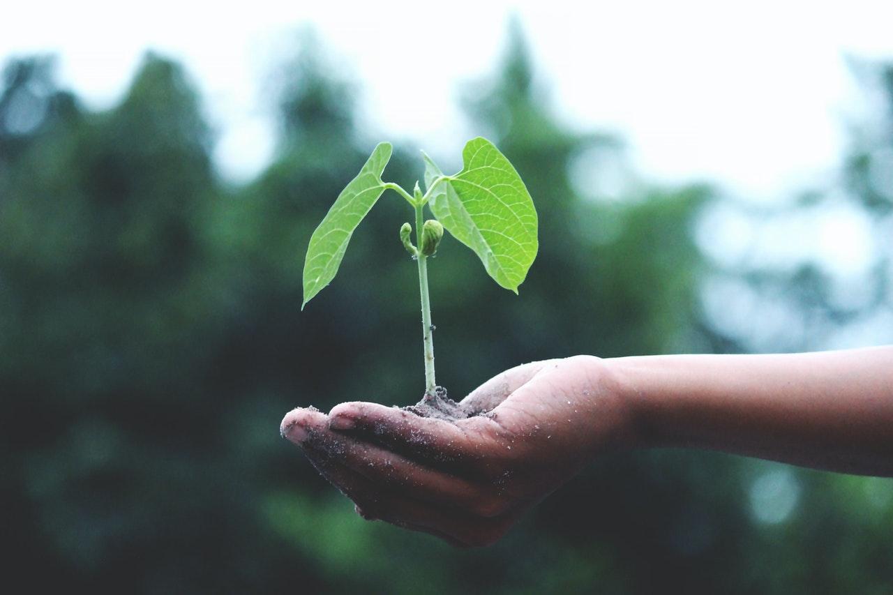 how to grow ARR